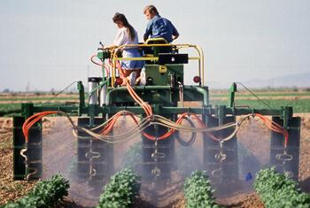 Pesticide_Safety_Is_No_Joke-Creative_Safety_Supply-350x235